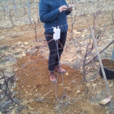 Sinafis démocratise les hautes technologies dans les vignes