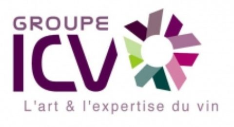 [Newsletter membre] Groupe ICV – Mai 2020