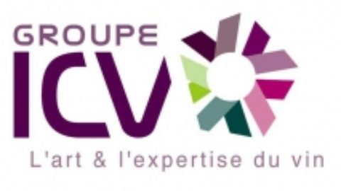 [Newsletter membre] GROUPE ICV – FORMATION