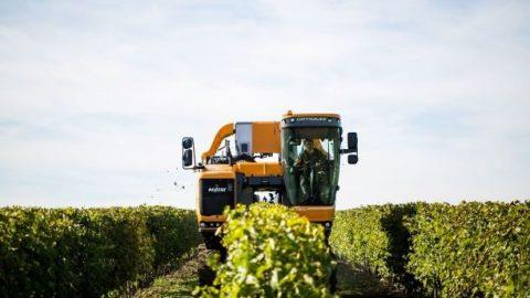 Pellenc, la référence mondiale d'une viticulture de précision