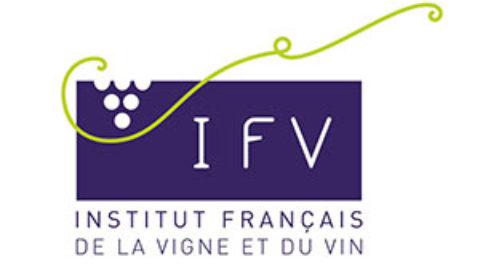 [Newsletter membre] IFV – mars 2020 : nouvelles fraîches et positives !
