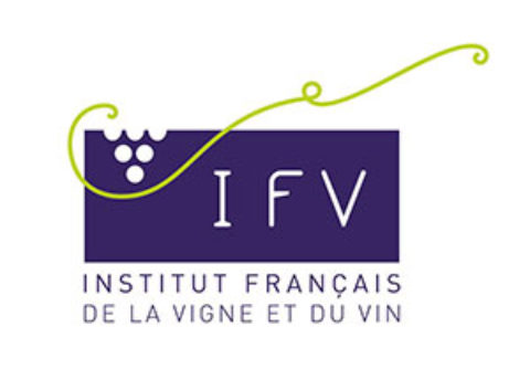[Newsletter membre] IFV – Avril 2020