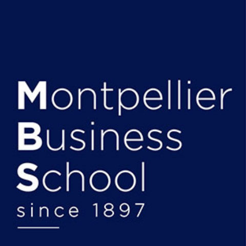 Stratme Up : le diagnostic stratégique de la Montpellier Business School