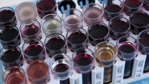 """Jean Natoli : """"Nous avons pesé sur la mutation de notre viticulture"""""""