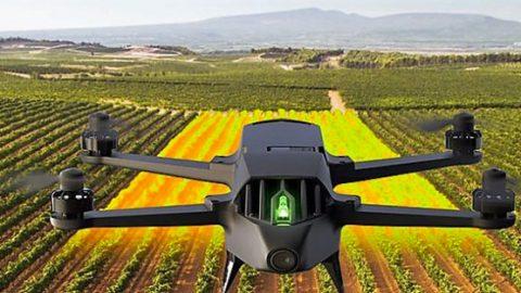 Parrot lance un drone pour l'agriculture