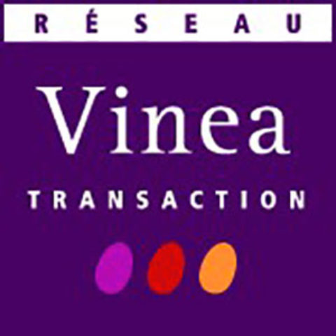 [Newsletter membre] Vinea Transaction