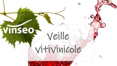 [Veille vitivinicole Vinseo]#25 octobre 2019