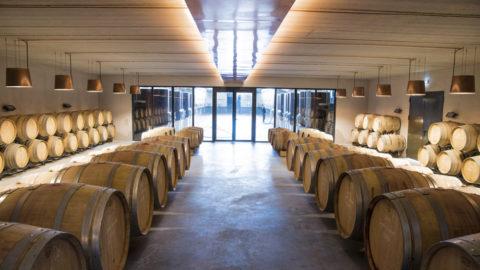 Boisson, l'expertise et l'offre technique au service de la viticulture