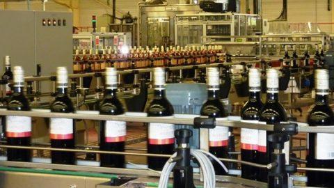 Embouteillage des vins : responsabilité partagée entre opérateurs
