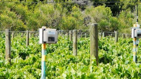 Observatoire des Usages de l'Agriculture Numérique