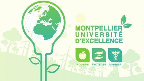 """Le projet MUSE """"Montpellier Université Excellence"""" validé"""