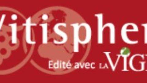 [Newsletter membre] Vitisphere E-lettre vigneron n°1083 octobre 2019