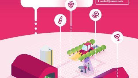 Dégustez et savourez les vins issus de l'innovation des membres de Vinseo durant les trois jours du SITEVI 2019 !