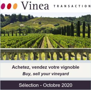 [Newsletter membre] Vinea Transaction - Sélection Octobre 2020
