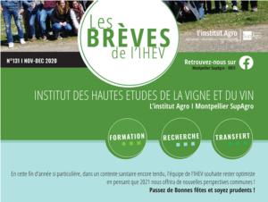 Les Brèves de l'IHEV - N° 131 NOV DEC 2020