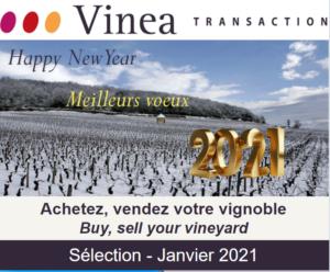 [Newsletter membre] Vinéa Transaction - Sélection Janvier 2021