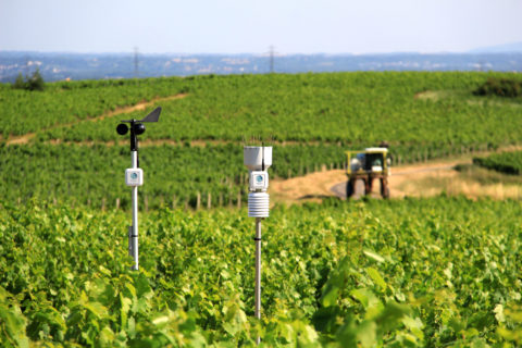 Weenat propose une gamme de huit capteurs agro-météo connectés et autonomes les uns des autres